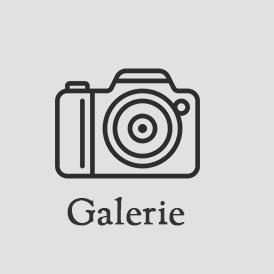 icon_galerie